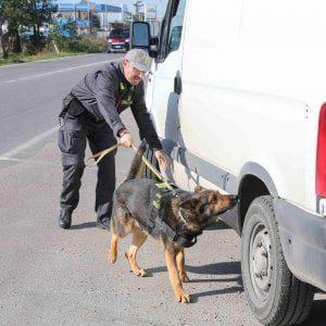 Foggia, sequestrata una tonnellata di droga in arrivo dal Marocco: tre arrestati