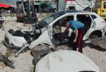 Bisceglie, decine di auto rubate nascoste in una serra: nei campi l'officina per smontarle a pezzi