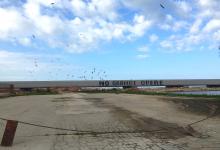 Processo sul porto, chiesto il rinvio a giudizio per 45 imputati. Si deciderà il 10 novembre