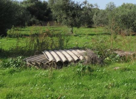 Rifiuti pericolosi e amianto sparsi sui terreni incolti in zona ASI