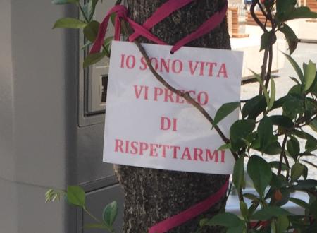 Il Comitato del Giro d'Italia liberi gli alberi dai nastrini rosa