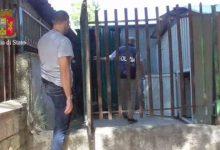 Bari, ecco i covi della criminalità a Japigia: vetri antiproiettile e due rottweiler come guardie