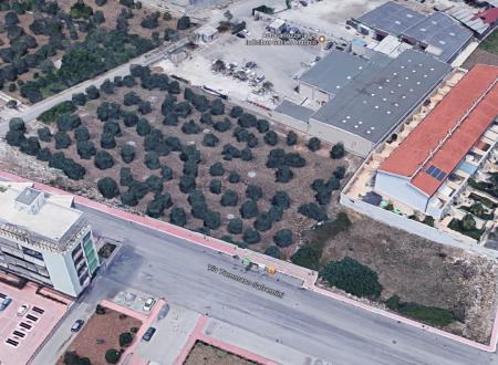 Revoca dell'avviso pubblico per la concessione in uso di un'area comunale in località Grangitello per la realizzazione di un impianto sportivo