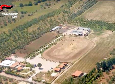 Andria, sequestro da 1,5 milioni a Sgaramella: il boss della droga aveva ippodromi e giardini esotici