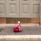Foggia, testa di vitello con un proiettile conficcato all'interno davanti a casa di un imprenditore