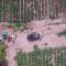 Guardia di Finanza: scoperta piantagione con 14.000 piante di marijuana, 6 arresti nel tarantino