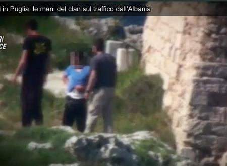 Traffico di droga dall'Albania al Salento, passando da Terlizzi