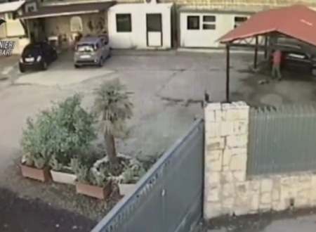 Sopprime un cane con un colpo di pistola. Arrestato a Molfetta un 59enne