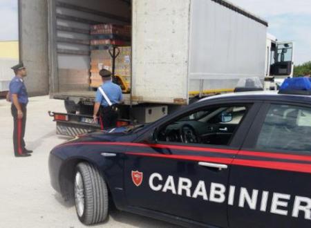 Mafia a Bari, la sentenza: «clan Parisi imponeva guardiani a case popolari»
