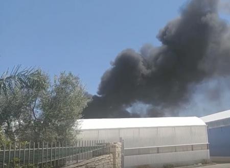 """Incendio al vivaio """"De Nicolo"""" al confine tra Molfetta e Terlizzi"""