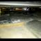 Bari, 50kg di droga nascosta nel doppiofondo di un camion-frigo: un arresto
