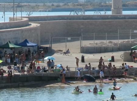 La Capitaneria di porto è stata coinvolta per le autorizzazioni dei chioschi in Cala Sant'Andrea?