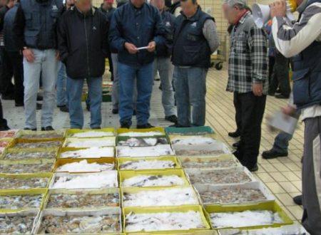 L'indagine dell'Antimafia di Bari: «I mercati ittici in mano ai clan»