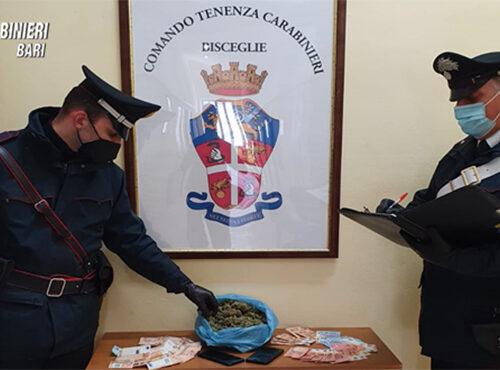 Bisceglie: arrestati due ragazzi con oltre 500gr di marijuana